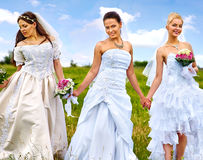 Group bride  summer outdoor. Stock Photography