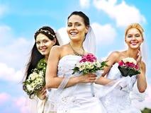 Group bride  summer outdoor. Group bride  wedding summer outdoor Stock Images