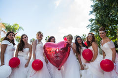 Group of brides Stock Image