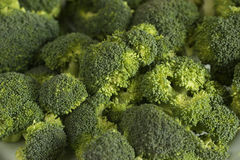 Group of brocoli. Detail of broccoli all green Stock Photos