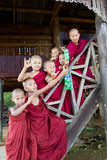 Group of buddhist monk boys poses Royalty Free Stock Photography