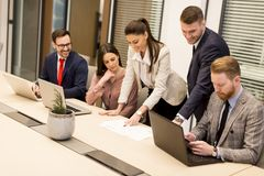 Group of buseness people who are seriously working Royalty Free Stock Image