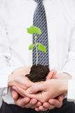 Group of business people holding a green sprout. Closeup shot Royalty Free Stock Photos