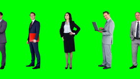 Group of business people meeting stock footage