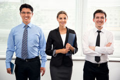 Group of business people in office. Royalty Free Stock Photography