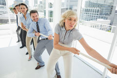 Group of business people pulling rope in office. Full length of a group of business people pulling rope in a bright office Stock Images
