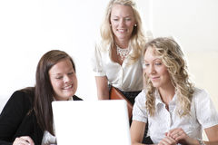 Group of business women. At the office working Stock Photography
