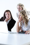 Group of business women. At the office working Stock Photos