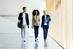 Group of business young people walking and talking in a hallway of the company. Royalty Free Stock Photography