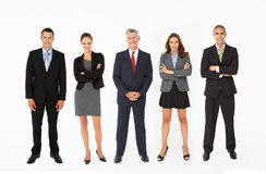 Group Of Businesspeople standing in line In Studio Royalty Free Stock Images