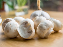Garlic and mushroom Stock Photos