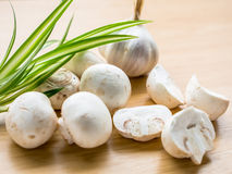 Garlic and mushroom Stock Images