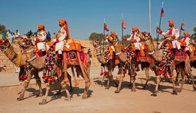 Group of the camel riders in uniforms going to the Desert Festival Stock Photography
