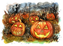 Group of candle lit carved Halloween pumpkins on the field Stock Photography