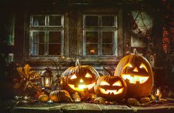 Candle lit Halloween pumpkins. Group of candle lit Halloween pumpkins royalty free stock image