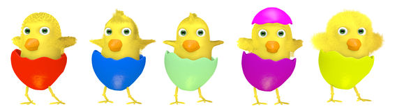 Group of cartoon Easter chickens isolated on white Stock Photos