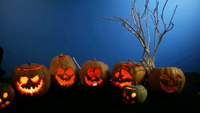 Group Of Carved Halloween Pumpkins Standing In A stock video footage