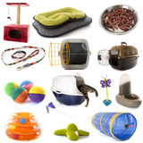 Group of cat accessories Stock Images