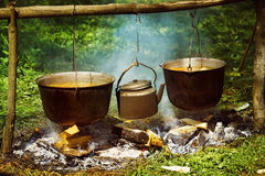A group of cauldrons and kettle are hanged upon fire. At tourist camp at green summer outdoors background Royalty Free Stock Photo