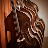 Group of cellos in the workshop violin maker Royalty Free Stock Photo