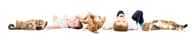 Group of cheerful children and pets royalty free stock photos
