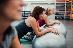 Group of cheerful female seniors in gym doing exercise on fit balls. stock photography