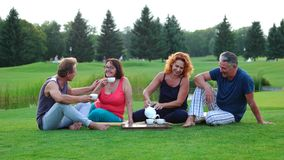 Group of cheerful friends drinking tea outdoors. stock video