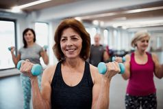 Group of cheerful seniors in gym doing exercise with dumbbells. A group of cheerful seniors standing in gym doing exercise with dumbbells royalty free stock photos