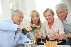 Group of cheerful seniors having champagne toast Stock Photography