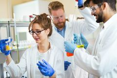 Group of chemistry students working in laboratory Stock Image
