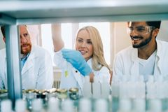 Group of chemistry students working in laboratory Stock Photography