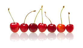 Group of cherries Royalty Free Stock Image