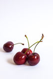 Group of cherries. In isolated white background Royalty Free Stock Image
