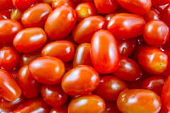 Group of cherry tomatoes Royalty Free Stock Images