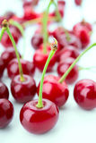 Group of cherry on a white Stock Photo