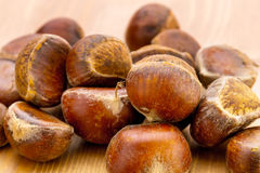 Group of chestnut Royalty Free Stock Images