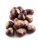 Group of chestnuts Stock Image