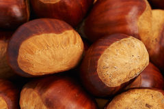 Group of chestnuts. Group of big brown chestnuts Royalty Free Stock Photos