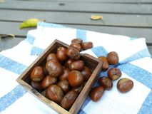 Group of chestnuts. Chestnuts in a bowl on an old wooden table. Chestnuts - fruits horse chestnut. Autumn background. Selective focus royalty free stock photo