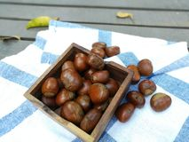 Group of chestnuts. Chestnuts in a bowl on an old wooden table. Chestnuts - fruits horse chestnut. Autumn background. Selective focus royalty free stock image