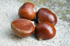 Group of chestnuts Royalty Free Stock Photos