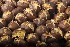 Group of chestnuts Stock Images