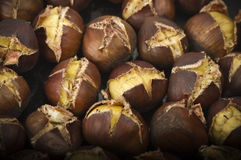 Group of chestnuts Royalty Free Stock Image