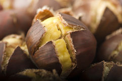 Group of chestnuts Stock Photography