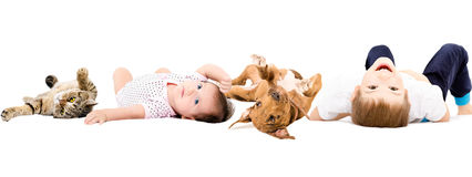 Group of children and pets, laying on a back. Isolated on white background Stock Photography