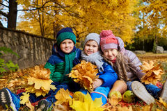 A group of children play in the park yellow autumn. Little boys Stock Image
