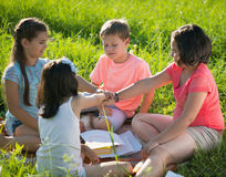 Group of children playing on grass Stock Images