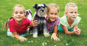 Group of children playing on green grass in spring park Stock Photos