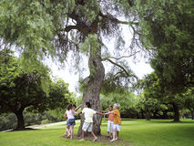 Group of children (7-9) playing ring-a-ring-o'roses in park, circling tree, holding hands Stock Photography