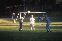 Group of children playing soccer in park Royalty Free Stock Photo